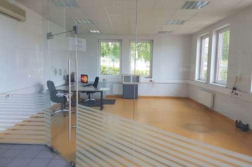 Büro und / oder Lagerfläche zu vermieten