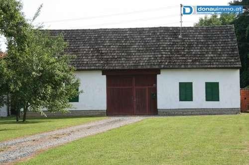 Idyllischer Bauernhof mit Nebengebäuden in Bocksdorf - Stegersbach