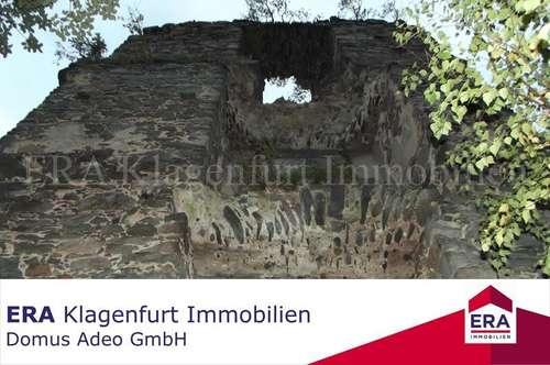 Historische Burgruine mitten in der Natur!