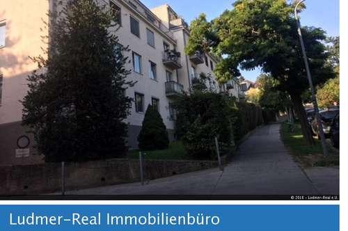 3 Zimmerwohnung in Dornbacher Bestlage - Weingartenblick