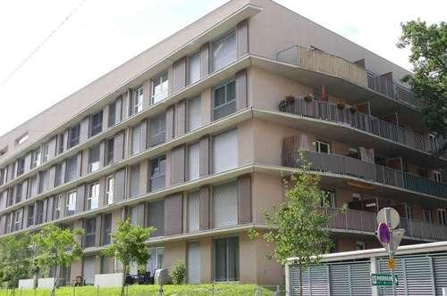 ANNA Luisa – PROVISIONSFREI – Neubau - allgemeine Dachterrasse