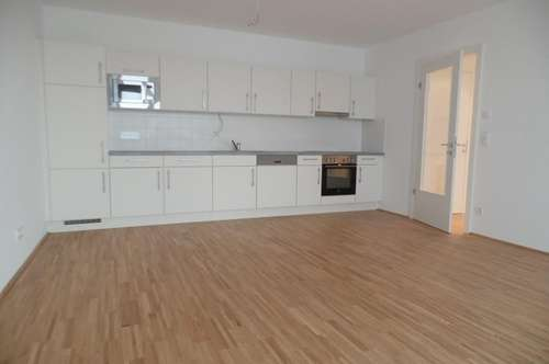 4 Zimmer - Neubau + Terrasse + 100 m² Dachgarten