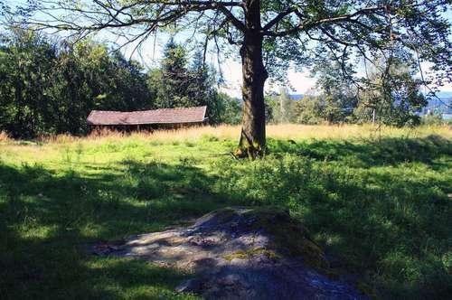 MAIERNIGG HILLS - WOHNEN WIE IN BEVERLY HILLS