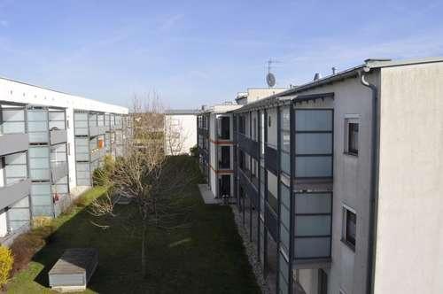 Helle gepflegte Wohnung nahe dem Neusiedlersee