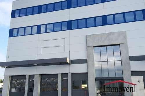 Neu errichtete variable Büroflächen im Süden von Wien (PROVISIONSFREI)