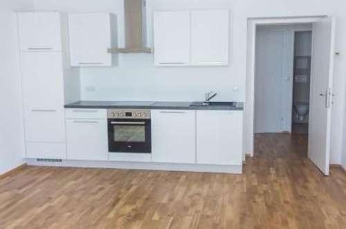 Befristet vermietete 2-Zimmer Wohnung mit Loggia zu verkaufen! Nähe Donaukanal!