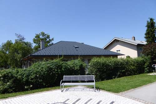 Amazing prime location - modernly renovated sunny, quiet bungalow