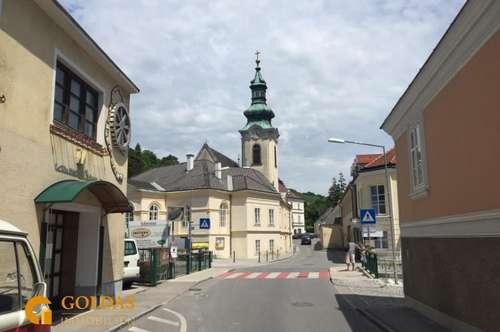 ERSTBEZUG-DACHTERRASSENMAISONETTE IM ZENTRUM VON WEIDLING/KLOSTERNEUBURG