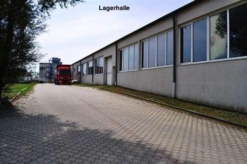 Ab 25€ Netto/Monat! GEWERBEPARK DONNERSKIRCHEN! Lager, Werkstatt, Büro, Geschäft! 10m2 - 1500m2!