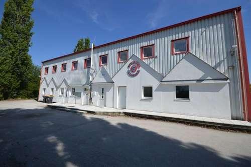 Büro/Geschäftsfläche im Wirtschaftspark Pöttelsdorf