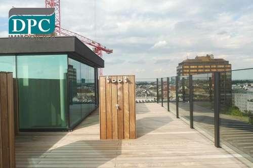 DPC | Neubau mit riesiger Dachterrasse