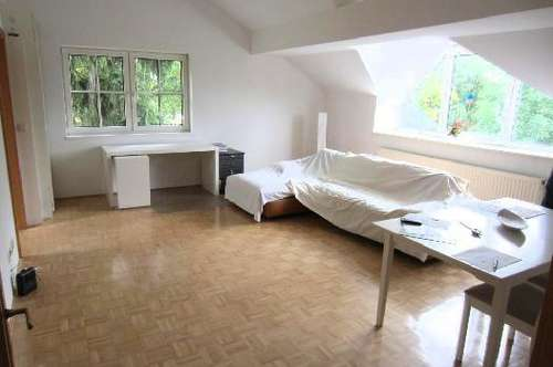 Sonnige 3 Zi-Dachgeschoß-Wohnung am See