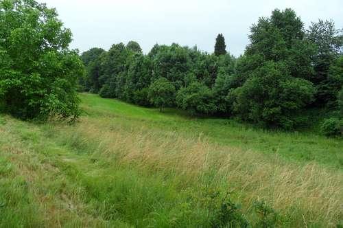 Großes Grundstück, Nähe Hartberg