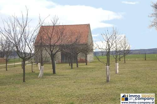 Landhaus im Herzen des Weinviertels