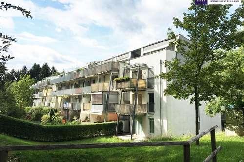 Grandiose Sonnenterrasse! 2-Zimmer Wohnung in absoluter Ruhelage und großer Terrasse!