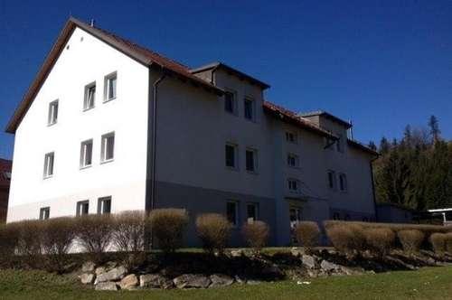 4 Zimmer-Wohnung mit Loggia