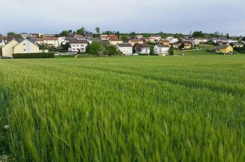 Landwirtschaftlicher Nutzgrund Acker