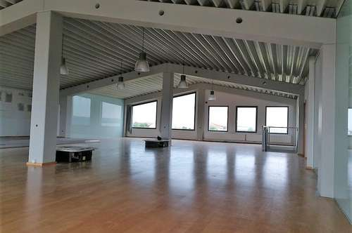 Repräsentatives Studio im Betriebsgebiet in Neusiedl am See