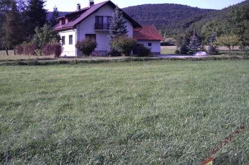Grosses Einfamilienhaus als Büro oder Gewerbesitz in Alland zu verkaufen