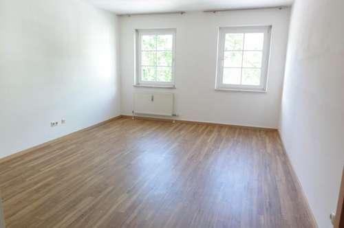 WOHNEN AM STADTPARK - GEMÜTLICHES & GEPFLEGTES AMBIENTE - TOP INFRASTRUKTUR IN GEHWEITE - MIETE: 2 Zimmer Wohnung in St. Johann im Pongau