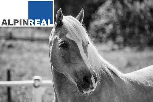 Bauern- und Pferdehof teilsaniert in ruhiger und ebener Lage