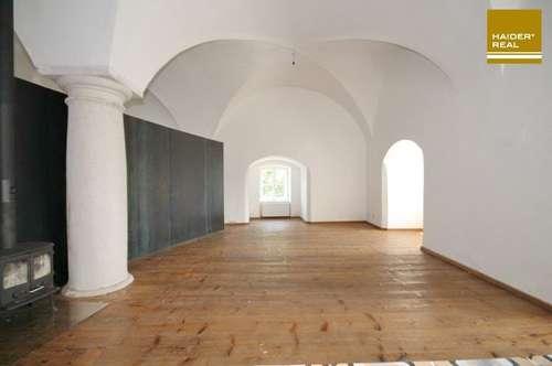 Exklusive Schlosswohnung 1. OG - 17. Jahrhundert trifft Moderne