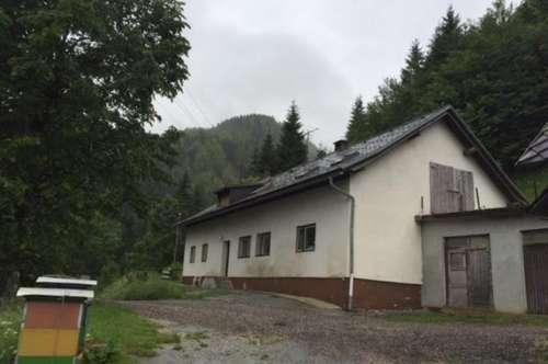 Land- und Forstwirtschaft mit Wirtschaftsgebäude (sanierungsbedürftig)