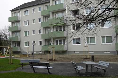 Genießen Sie grünes, ruhiges Wohnen mit allen Vorteilen der schönen Stadt Wels - generalsaniertes Gebäude - unschlagbarer Preis - provisionsfrei!
