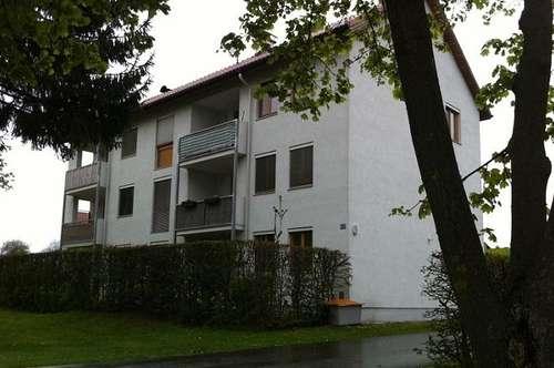 PROVISIONSFREI - Groß Sankt Florian - ÖWG Wohnbau - Miete ODER Miete mit Kaufoption - 2 Zimmer