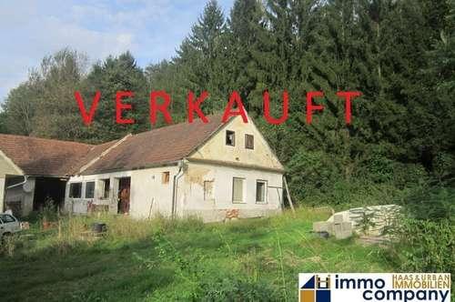 Großer, teilsanierter Dreiseithof in Einzellage im Bezirk Jennersdorf – 58.000,-- €