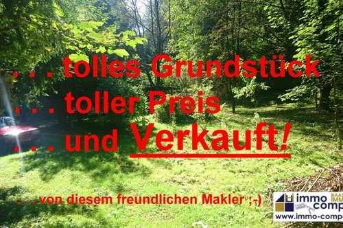 Wunderschöne, urige Waldhütte, ca. 20m² mit ca. 2463m² Grund nähe Königsdorf – 14.0000 Euro!