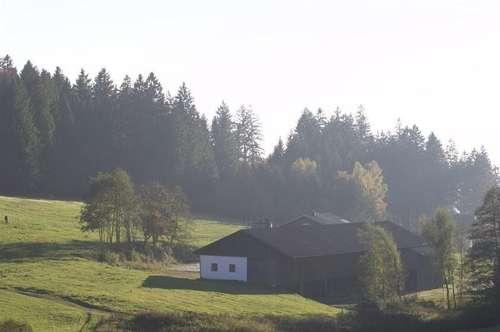 REITERHOF  Sacherl in Alleinlage
