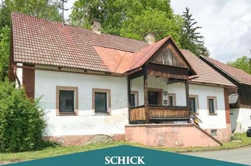 FÜR LIEBHABER: Baugrundstück mit renovierungsbedürftigen Bauernhaus und Stadel