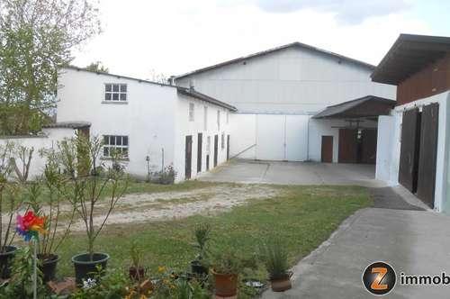 Großzügiges Bauernhaus mit landwirtschaftl. Grund