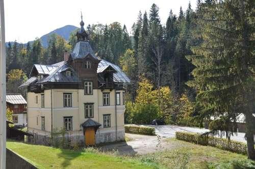 Alte Villa - Sanierungsbedürftig ERFOLGREICH VERMITTELT