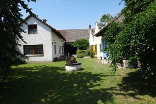 Seegemeinde Illmitz, der pannonische Traum,incl Stadl und Gewölbekeller - Wachtler Immobilien