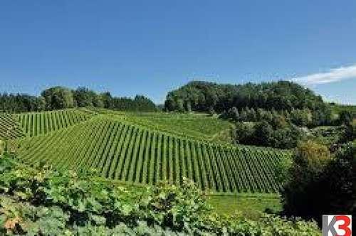 Südsteiermark - wunderschönes Weingut zu verkaufen!!!