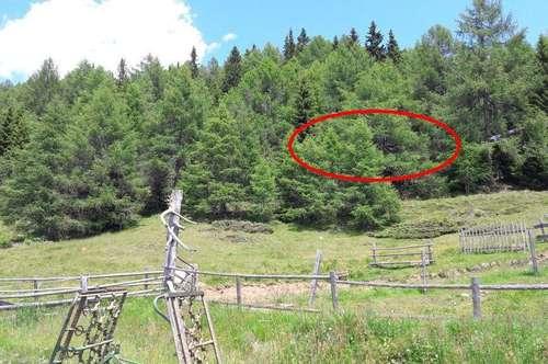 Grundstück mit Freizeitwohnsitz - Widmung, Tschiernock, Kärnten provisionsfrei