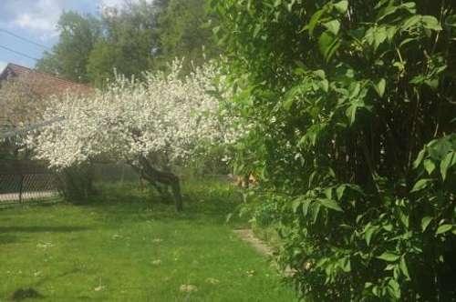 Graz - Andritz: Baugrundstück mit Altbestand
