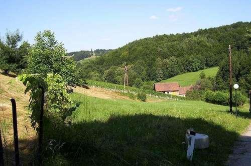 *Natur Pur*... Grundstücke (Freilandsondernutzung Auffüllungsgebiet) im südsteirischen Weinland