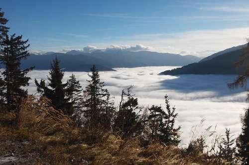 40 ha Wald im mittleren Mölltal (Kärnten)