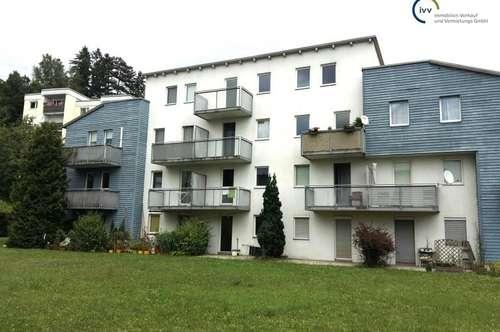 Freundliche und ruhige 2 Zimmer Wohnung mit Balkon - Mariatroster Straße 101A - Top 12