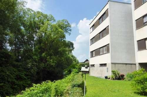 Neu renovierte 3-Zimmer-Wohnung in zentraler Südlage