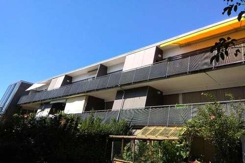 Komfortables 1-Zimmerappartement mit Sonnenterrasse!