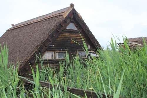 Nostalgische Seehütte am Neusiedler See