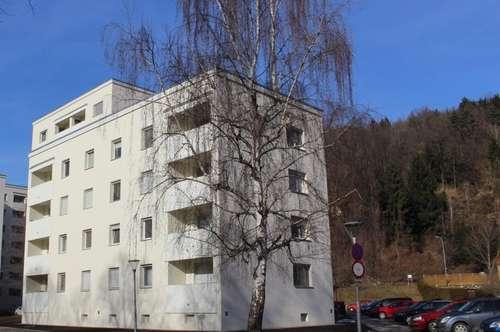 Generalsaniert: Attraktive preiswerte 3 Zimmerwohnung mit sonnigem Balkon in herrlicher Ruhelage am Murufer
