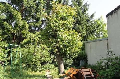 Stadthaus mit Garten in Poysdorf Bezirk Mistelbach