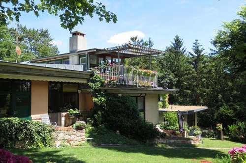 Architektentraum mit majestätischer Gartenanlage am Fuße der Weingärten