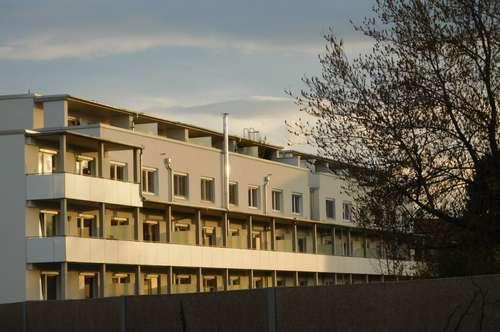 Herz-Jesu-Viertel: Aussicht in Grünruhelage für Familie oder Pärchen, Dachterrasse
