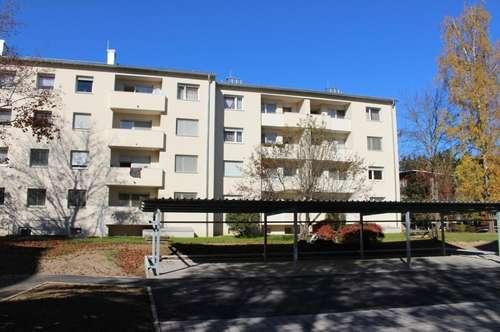 Ruhige & sonnige 3 Zimmer-Erdgeschosswohnung mit Balkon am grünen Ortsrand - provisionsfrei